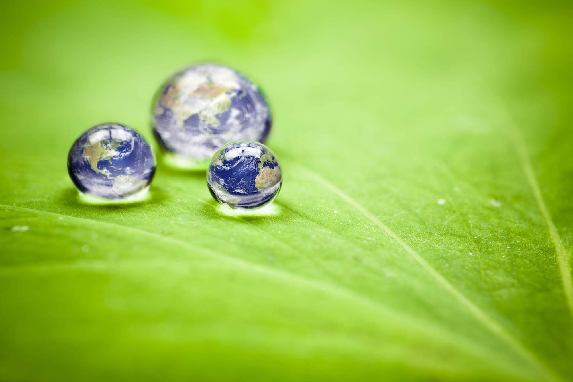 earth droplets